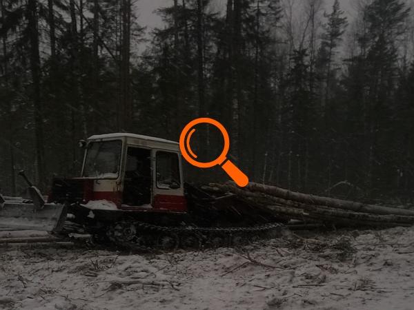 Заготовка леса и складирование строительного материала